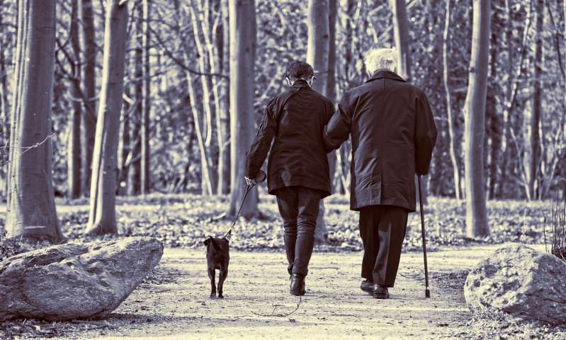Research Says Walking is an Ideal Activity for People with Osteoporosis