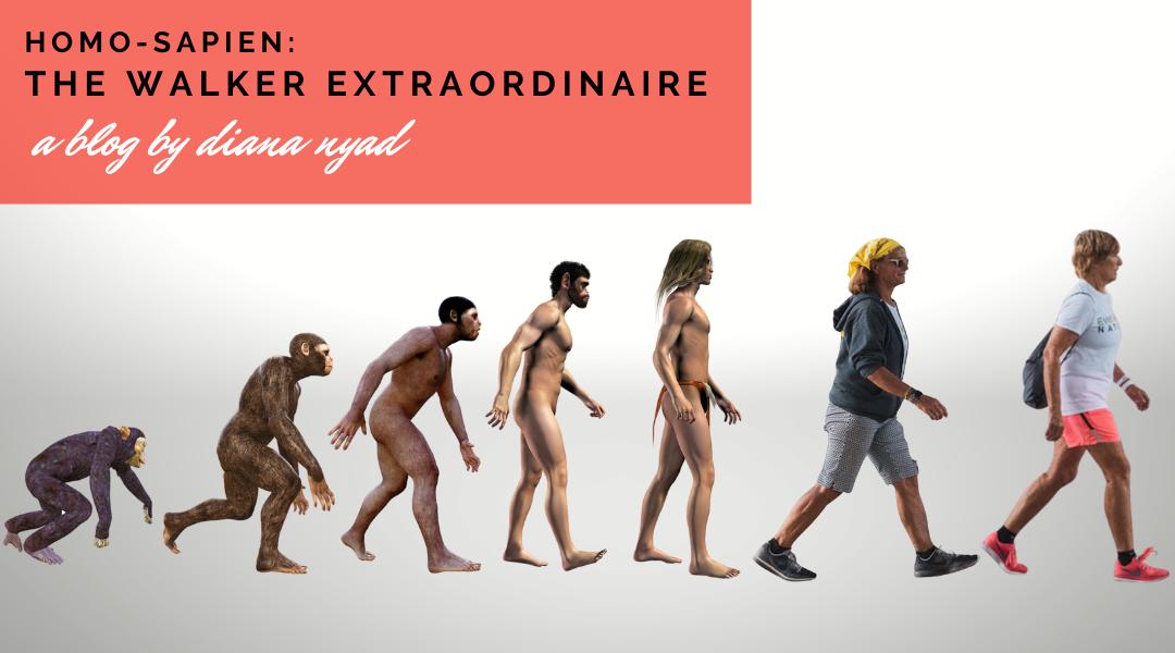 Homo-Sapien: The Walker Extraordinaire