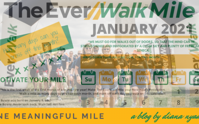 One Meaningful Mile