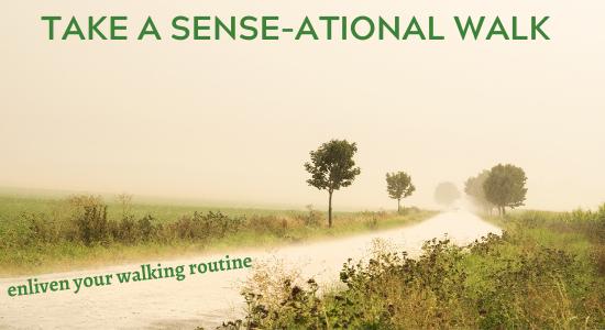 Take a Sense-ational Walk